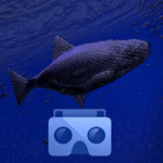 Be a Fish Apk